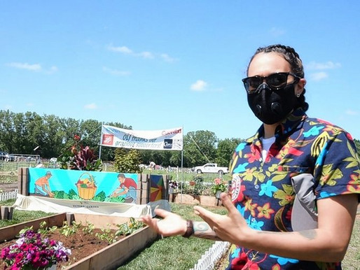 Garden beds in Naperville will help fight food insecurity