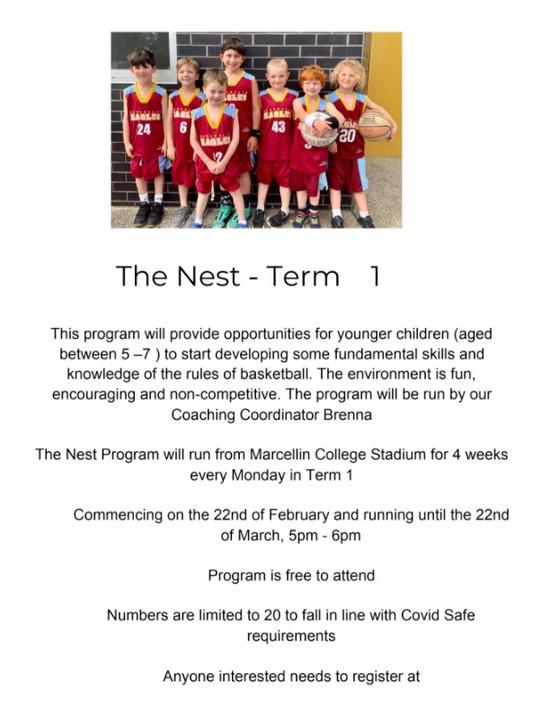 The Nest - Term 1