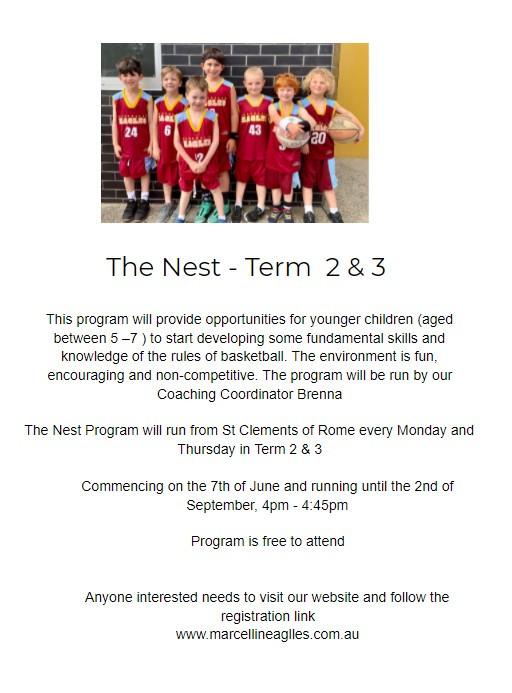 The Nest - Term 2 & 3