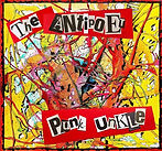 Punk Ucle cover cropped.jpg