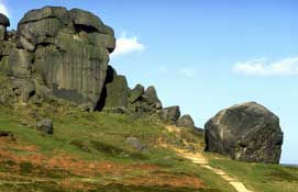 Cow and Calf at Ilkley Moor