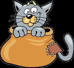 кот в мешке.png