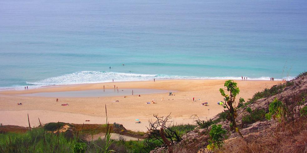 Limpeza da Praia Paredes da Vitória
