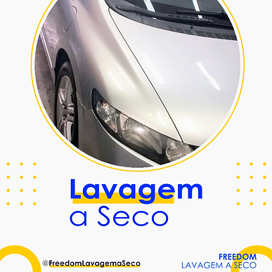 lavagem a seco freedom.png