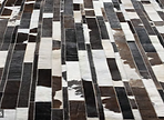 hair on hide,  rugs, leather, FORMULA ONE  FURNICHE, FORMULA ONE FURNICHE  Pte Ltd , FABRIC, LEATHER, MIRROR, TELEVISION, FFE PRODUCTS, HOTEL CHAIN, CERAMIC & STONE TILES, LIGHTING, WINDOW TREATMENT, SOFT FURNISHING, BED LINEN, BATHROOM ACCESSORIES, reviews BATH TILES ,GOLD LEAF , FFE PRODUCTS, HOSPITALITY ,SOLUTIONS ,TABLE, PRODUCTS ,MIRROR BATHROOM furniture,window treatments