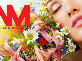 Reggaeton 2016 Mix - Nuevo Reggaeton 2016 Megamix Vol 69 Las Canciones Mas Escuchadas
