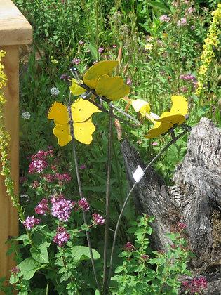 vlinders op stok