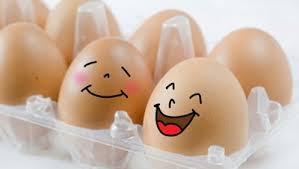 Egg-cellent Facts About Eggs