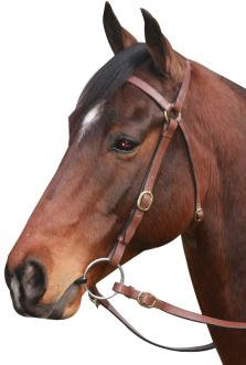 Mcalister Barcoo Bridle