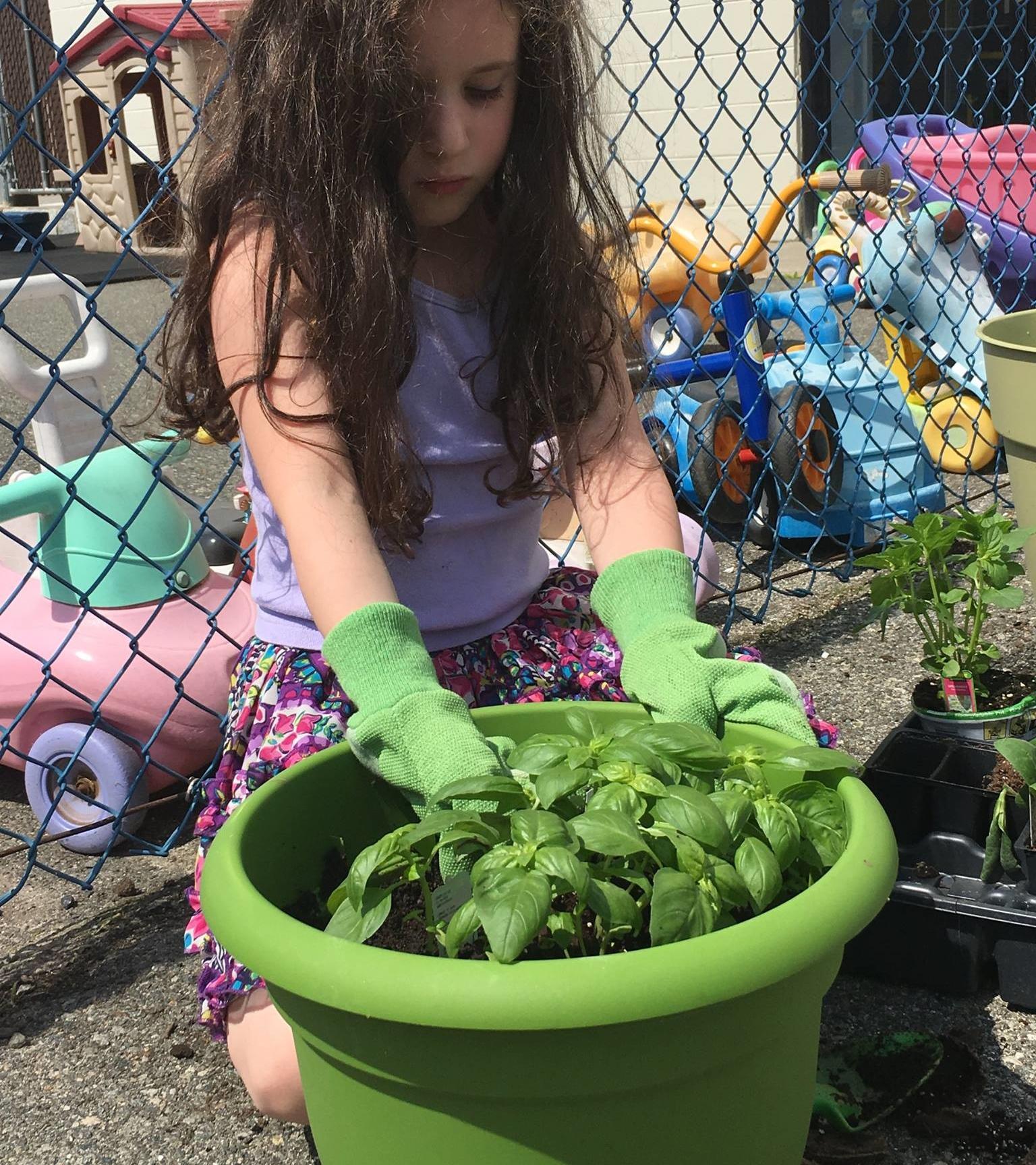 Gardening (10)