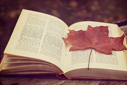 Melyik őszi könyvet kell elolvasnod?