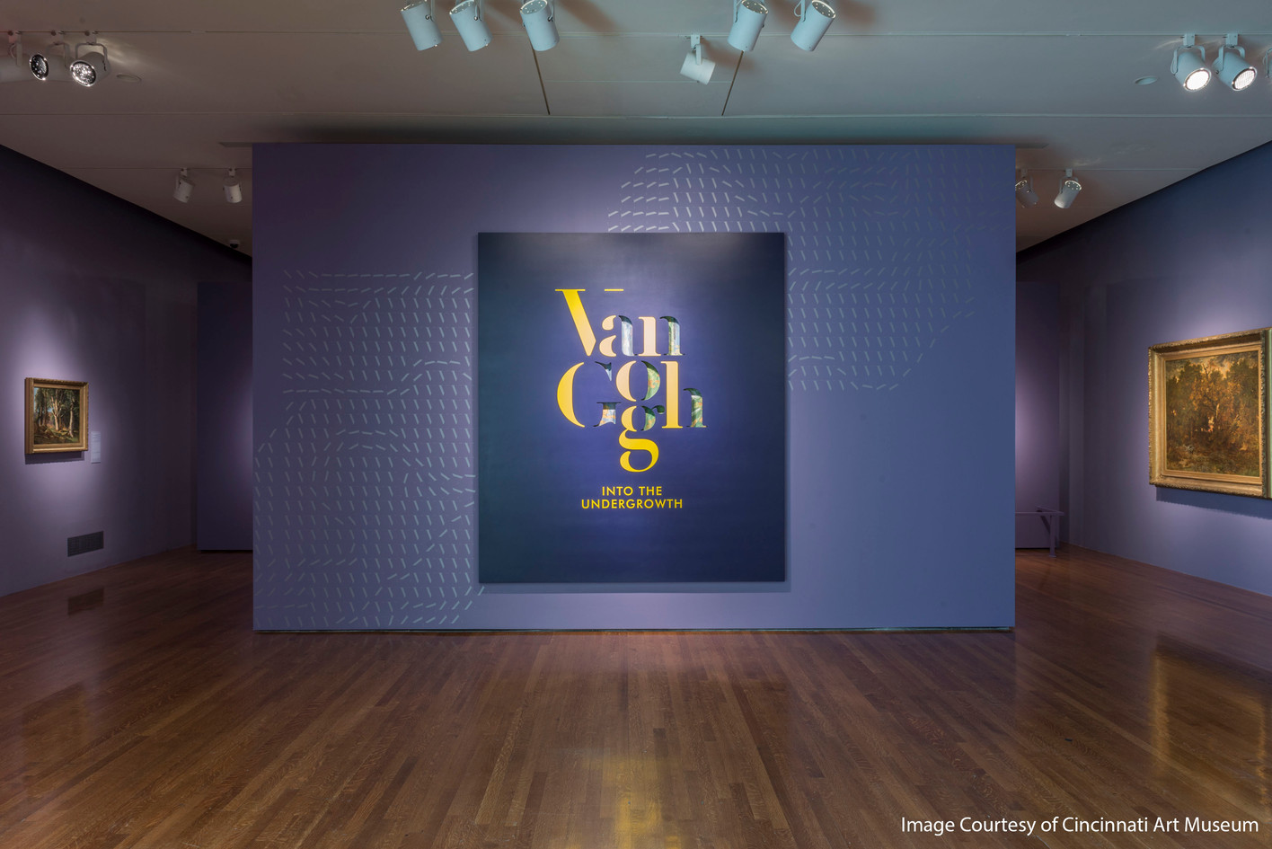 2016Undergrowth_Van_Gogh_a01.jpg