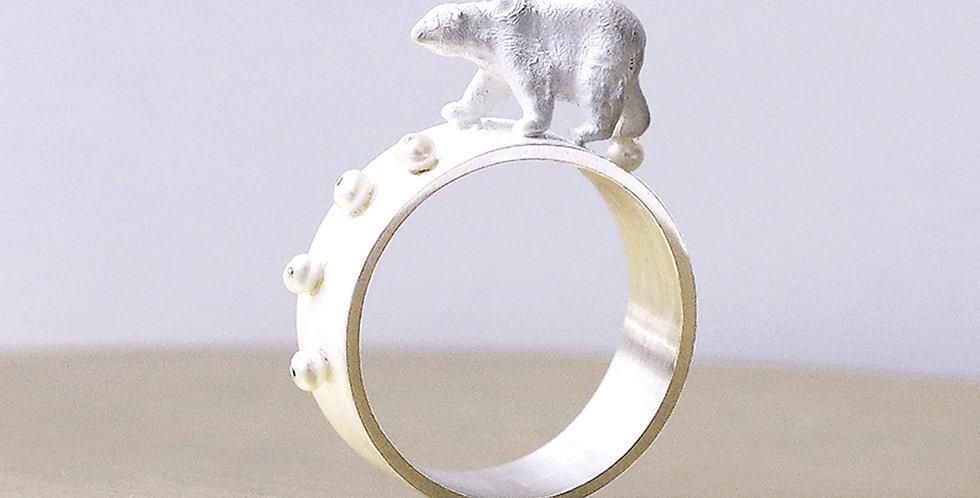 Polar Bear - Melting Footprint