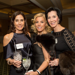 82 WLW_ACS PATRON PARTY2017.jpg