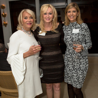 61 WLW_ACS PATRON PARTY2017.jpg