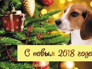 Поздравляем с наступающим новым годом и рождеством.