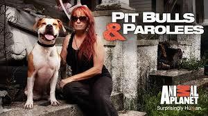 Pitbulls and Parolees Logo.jpg