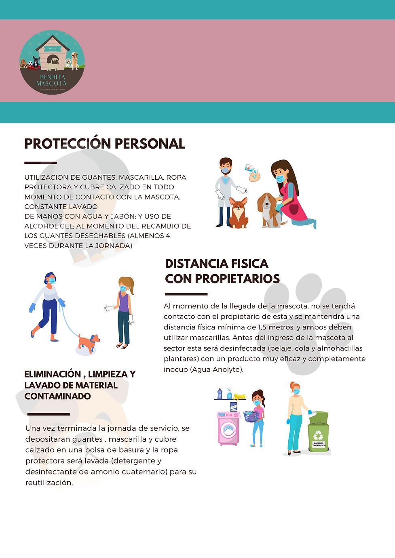 MEDIDAS WEB.png