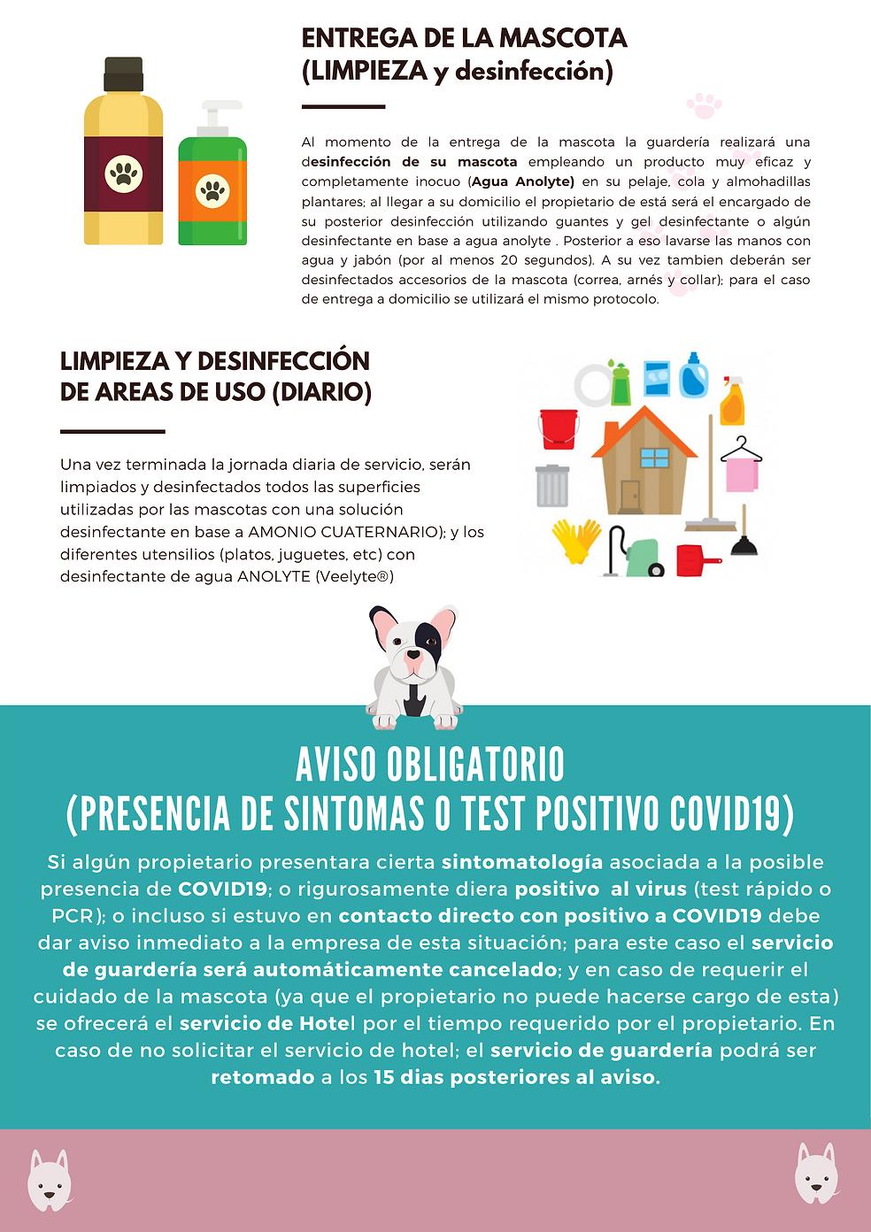 MEDIDAS WEB 2.png