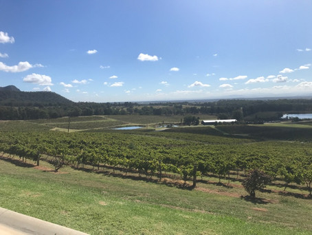 My Ultimate Vineyards Tour