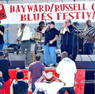 Blues Harmonica Explosion