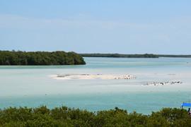 Bancos de arena de Isla pasión