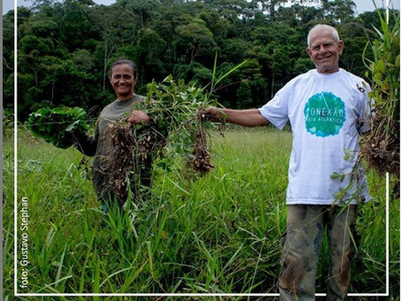 25 de maio, Dia do Trabalhado Rural