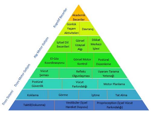 Öğrenme Piramidi ve Duyu Bütünleme Terapisi