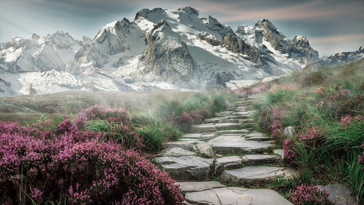 Beginner landscape photography courses