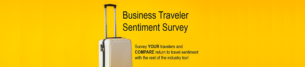 Traveler Sentiment Landing Page Banner 2