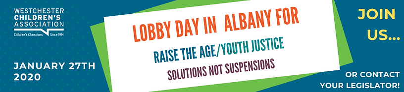 Copy of RAISE THE AGE YOUTH JUSTICE Solu