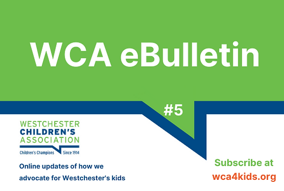 _WCA eBulletin Wix graphics (2).png