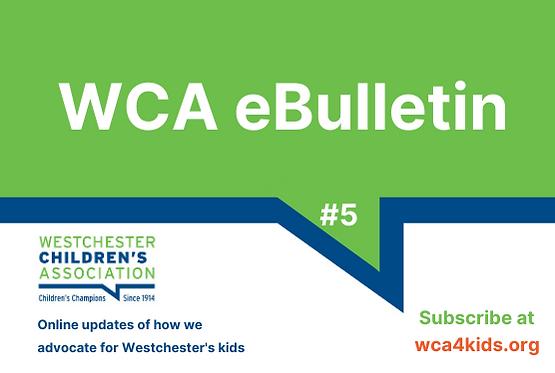 _WCA eBulletin Wix graphics (2).png