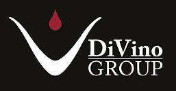 DiVino_Group_new_logo_white_edited.jpg