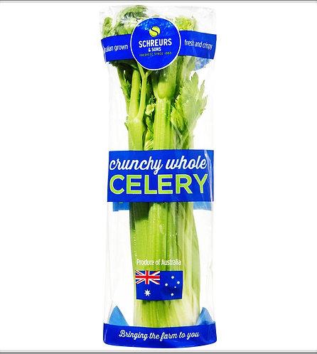 Australia Celery ( Kg )