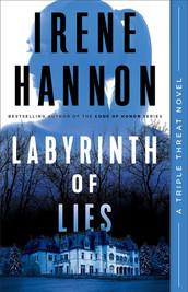 labyrinth of lies.jpg