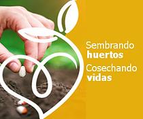 sembrando-huertos-web.png