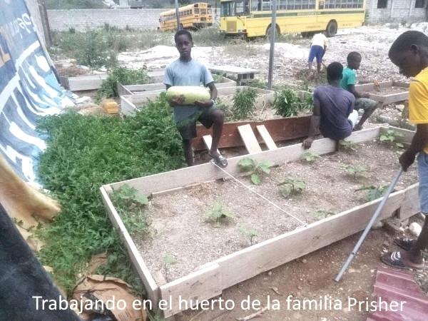 Huerto que está alimentando a los niños de la Casa-Hogar Esperanza