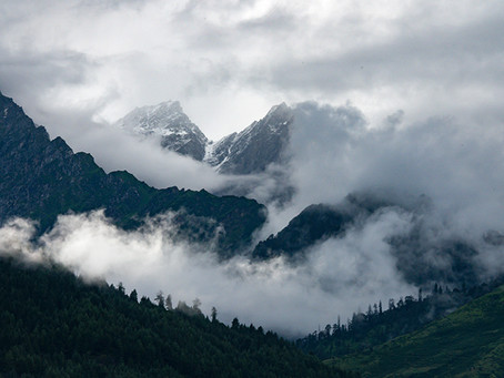 Йога-семинар в предгорьях Гималаев, 2019 г.