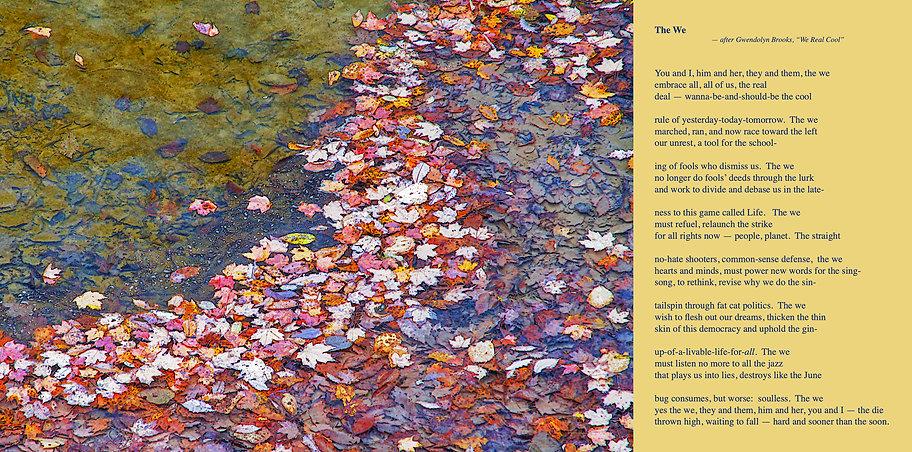 the We Poem Image.jpg