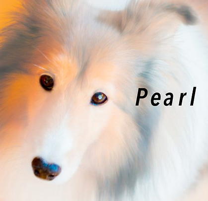 Peark Book Cover.png
