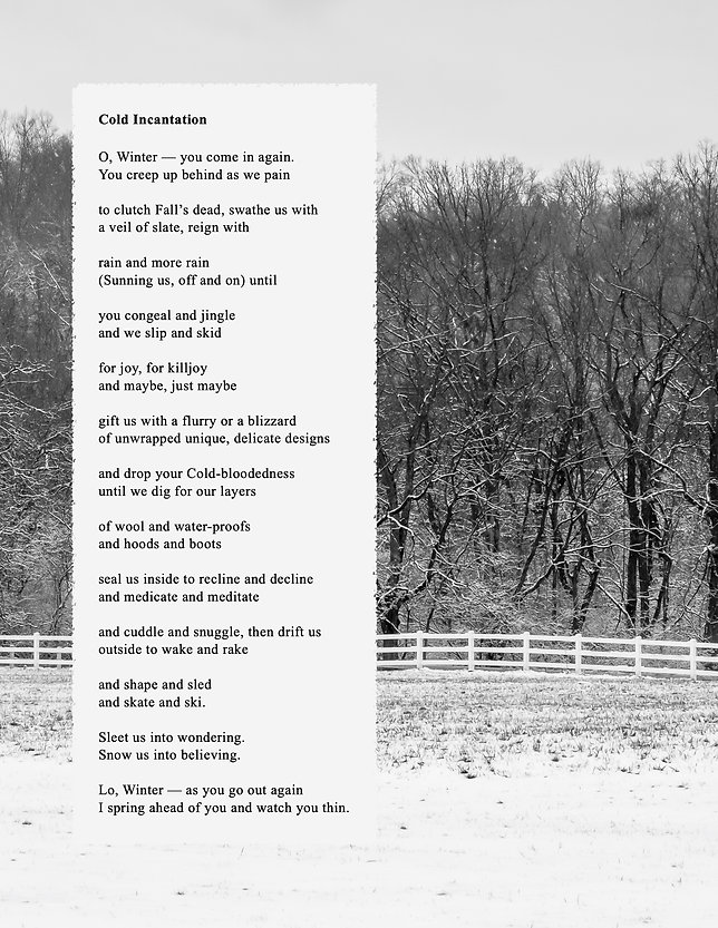 Cold Incantation Poem Photo.jpg