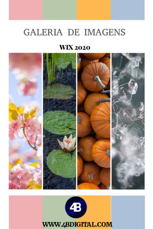 GALERIA DE IMAGENS  WIX 2020.jpg
