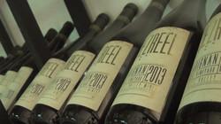 Jezreel Winery - 1