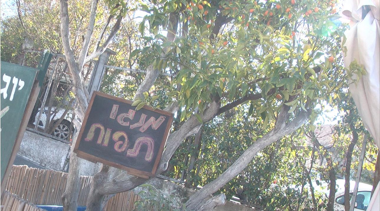 Jerusalem Train Tracks - 2
