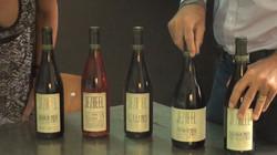 Jezreel Winery - 2