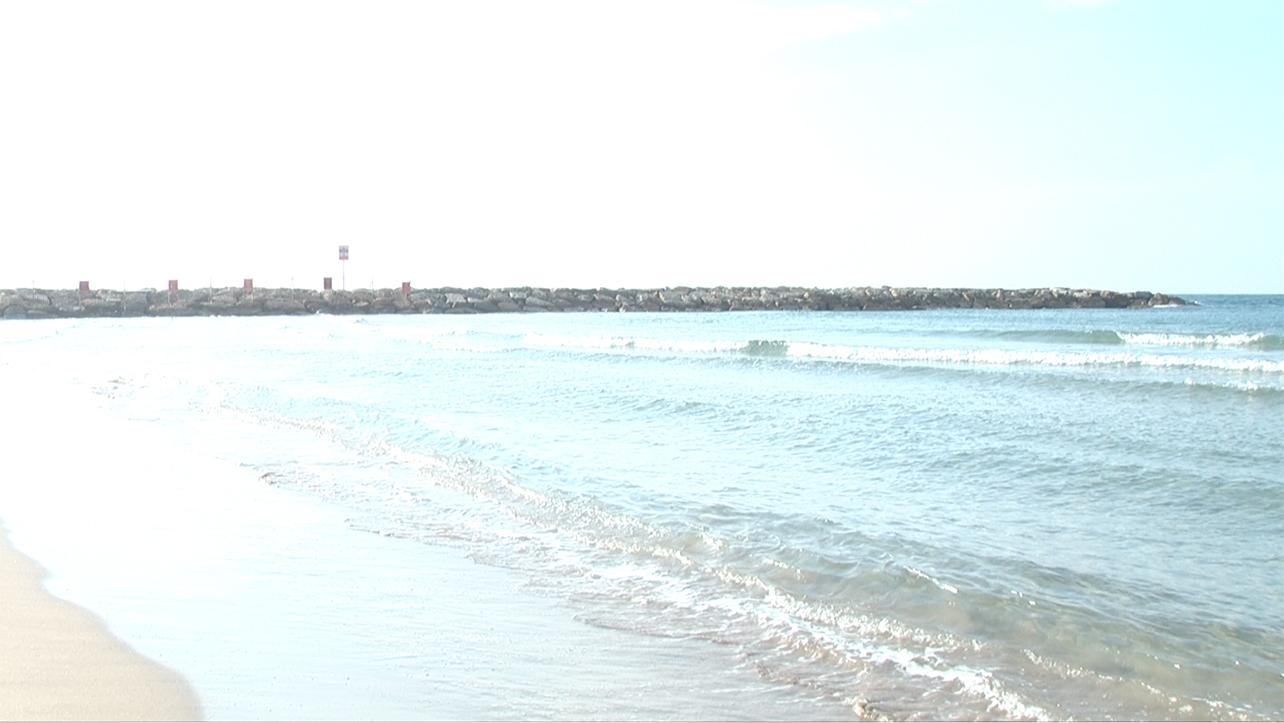 Israel Surf Club - 4