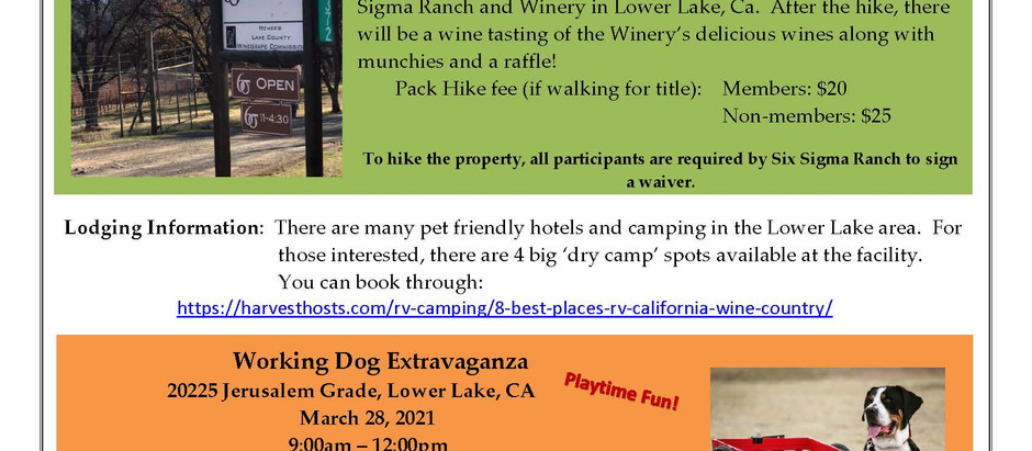 Six Sigma Pack Hike, Lower Lake CA.  March 27, 2021