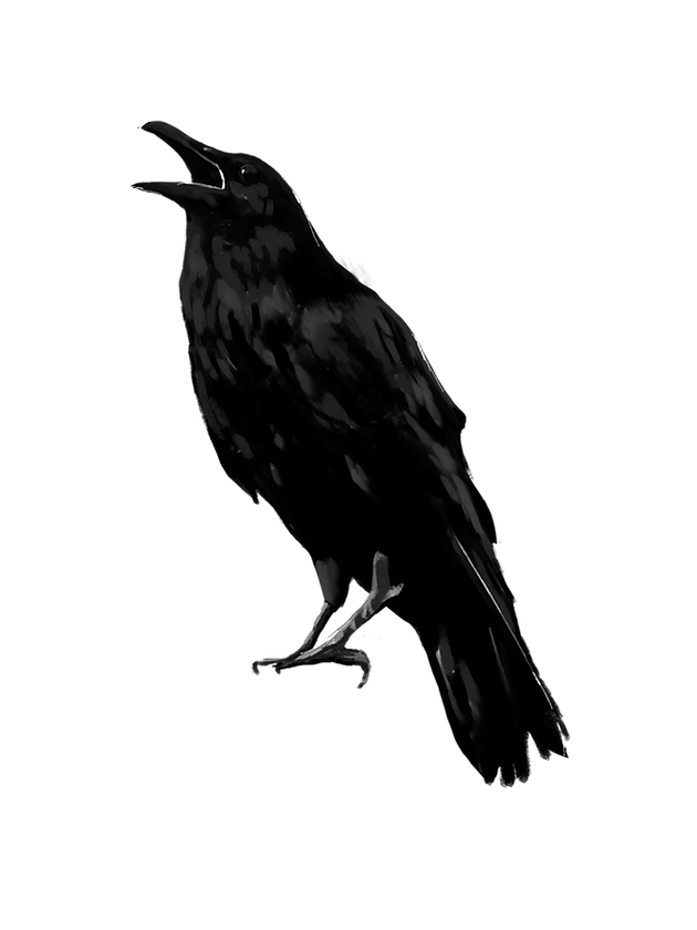 kisspng-american-crow-rook-new-caledonia