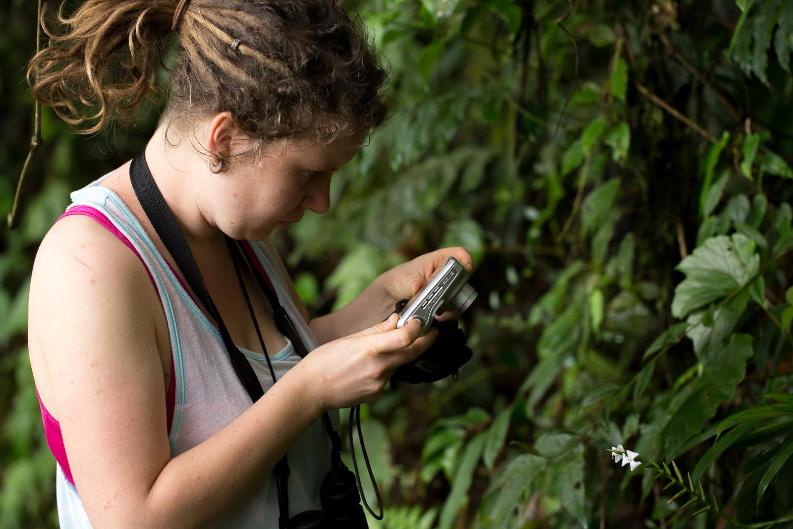 Erfassung unbekannter Pflanzenarten